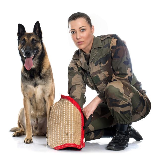 Woman soldier and German Shepherd