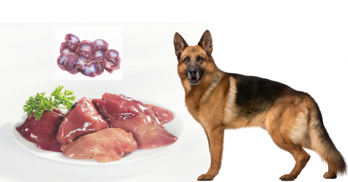 chicken liver recipe for dogs
