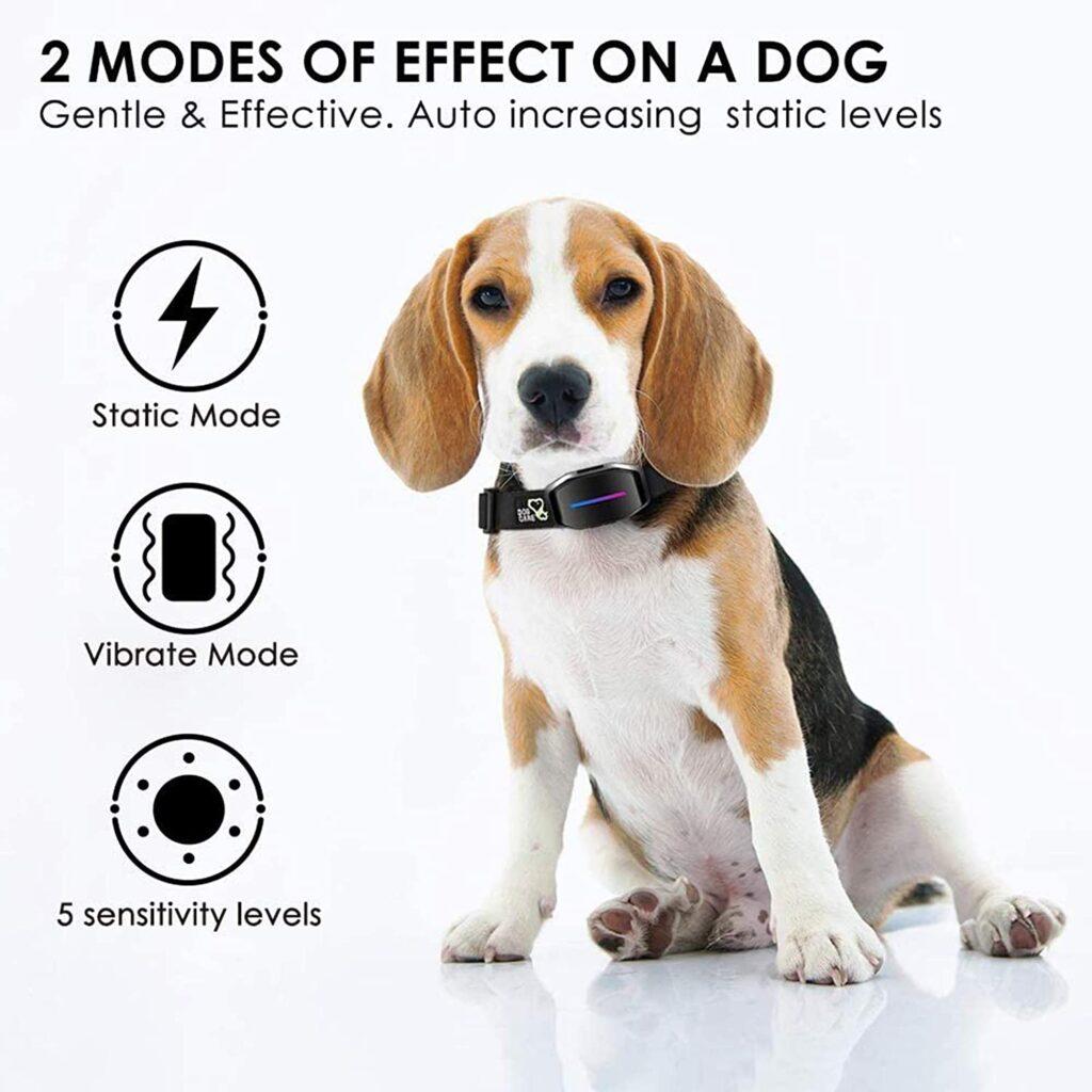 anti bark dog collar