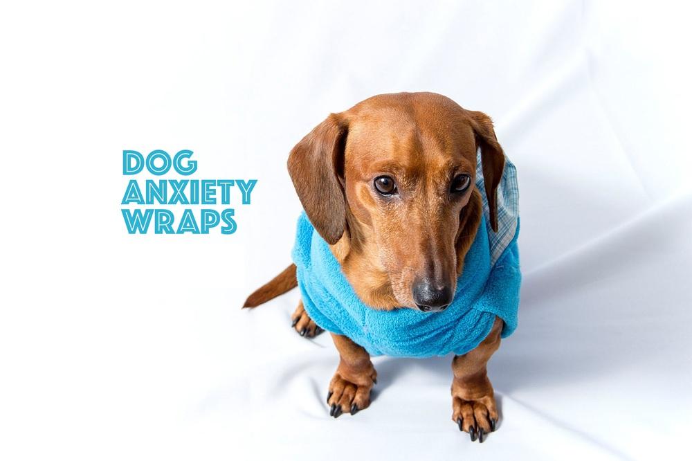 DIY-dog-anxiety-wraps