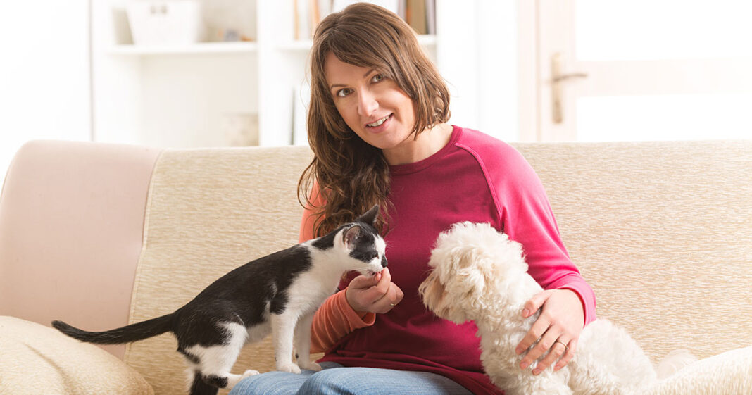 Introduce a New Pet to Your Dog or Cat